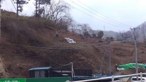 国道沿いの斜面で除染作業を行う労働者の姿がありました。